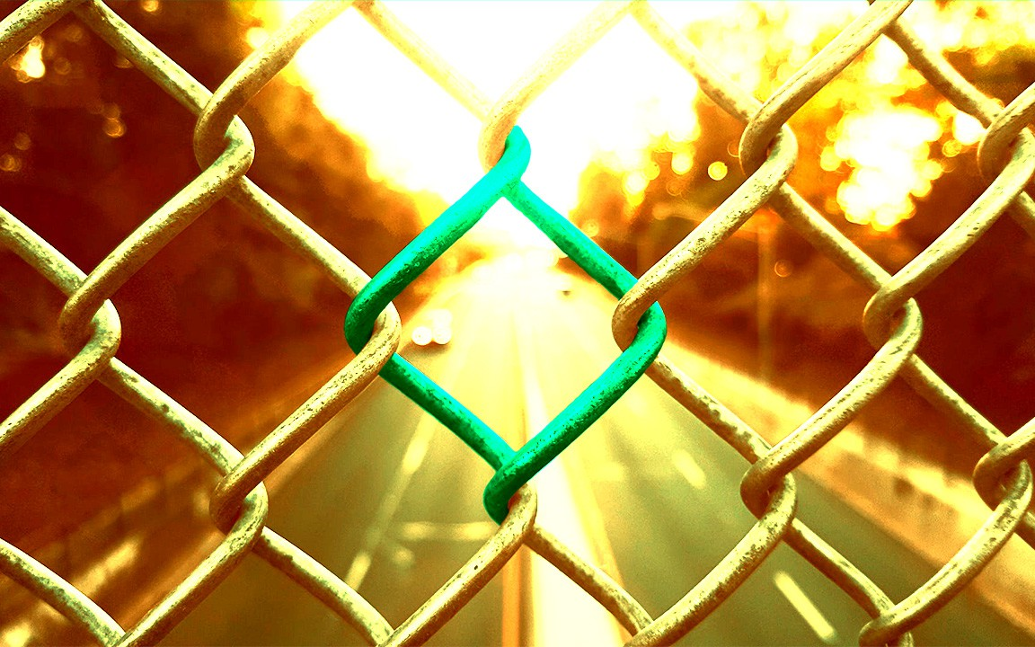 Link in a fence