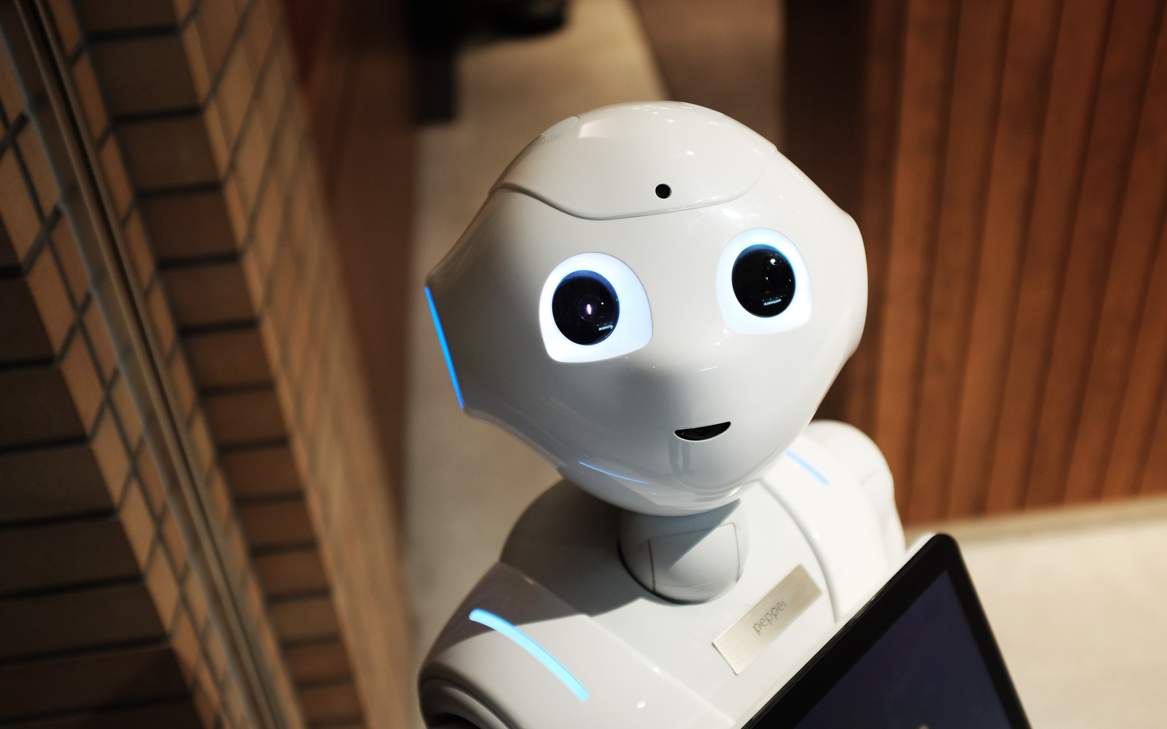 AI Bot Alice From the Mad Botter Offers Agencies Automation and Integration