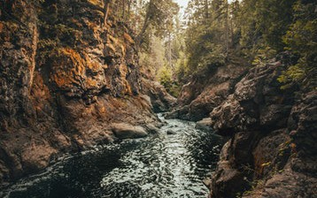 The Powerful Resource of PHP Stream Wrappers