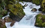 Java 10 Immutable/Unmodifiable Stream API Collectors