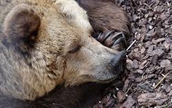 Spring Hibernate Integration Tutorial