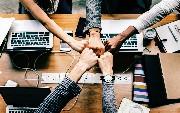 Drive Innovation Through Team Diversity