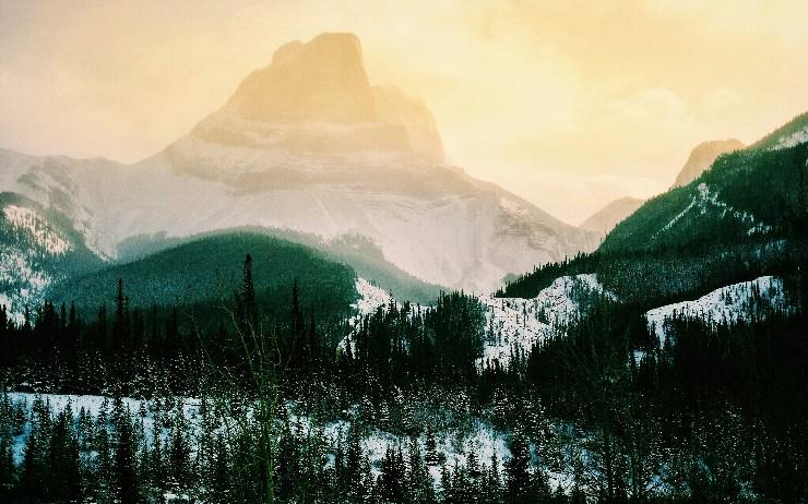 Escape From Callback Mountain!