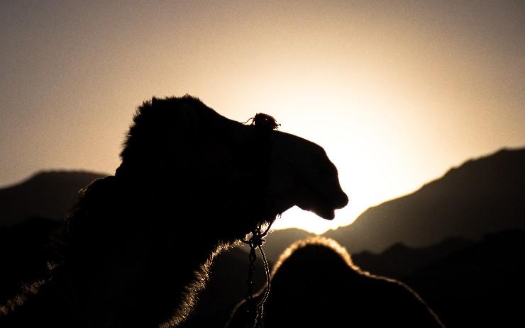Apache Camel URI Completion in Eclipse XML Editor